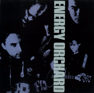 ENERGY ORCHARD - Energy Orchard (LP) (VG-EX/VG+)